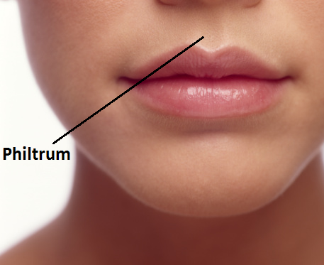 Naturally Get Rid Of Cleft Chin