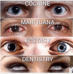 Your look after cocaine, marijuana, ecstasy and dentistry.