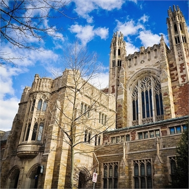 Yale University located 5.4 miles to the north of New Haven's top cosmetic dentist Shoreline Dental