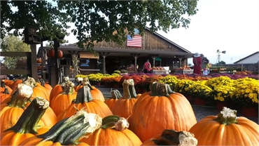 Donaldson Farms Farm Market at 10 minutes drive to the northwest of Long Valley dentist Cazes Family
