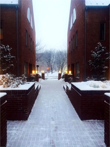 Courtyard in winter at Alonzo M. Bell DDS office in Alexandria VA