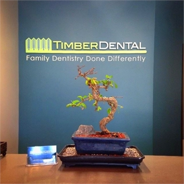 Bonsai tree at Timber Dental Portland OR 97212