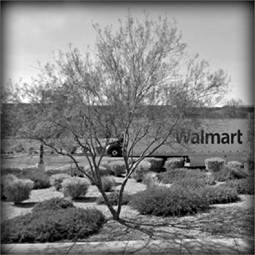 Walmart Supercenter on W Lake Mead Blvd 3.9 miles to the south of Aces Dental North Las Vegas NV 890