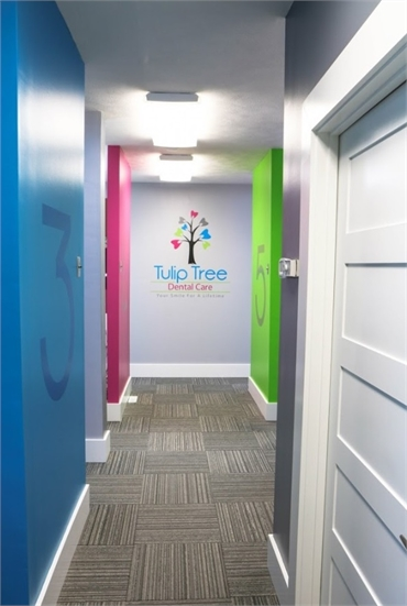 Hallway at South Bend dentist Tulip Tree Dental Care
