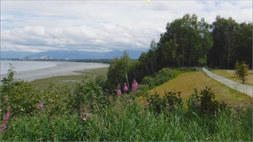Tony Knowles Coastal Trail 8.3 miles to the southwest of Alaska Implants