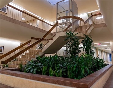 Winder staircase at Coral Springs dentist Wisdom Dental