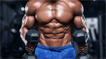 Knowing The Effects Of Steroids To Your Body